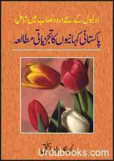 pakistani-kahanion-ka-tajziati-mutalia