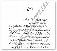amarbail-novel-by-bano-qudsia-1